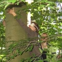 Tastsinn: Bäume finden