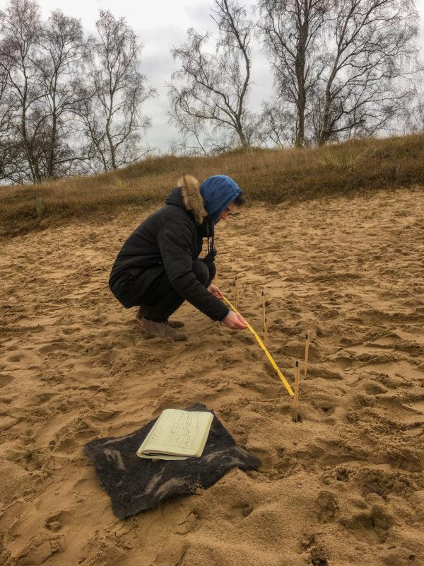 Spuren lesen: Gangarten und Bewegungs- muster erkennen13-04-2019 Boberger Sanddüne